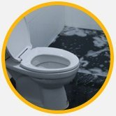 Toilet Overflow Clean Up San Fernando Valley
