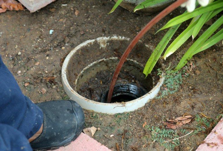 Sewage Backup Services