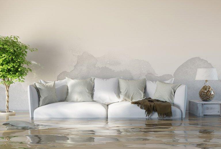 Calabasas Water Damage Restoration